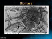 H3 - Flood biomass concept