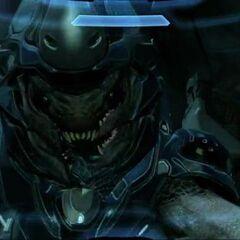 Un Elite che attacca Master Chief in Halo 4