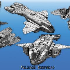 Verschiedene ansichten des D77H-TCI Pelican.