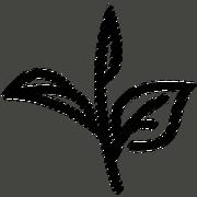 USER-TheRequiemEmpire signature tea