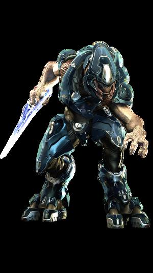 Elite Storm - Halo 4