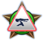 Halo 4 Orden Chefingenieur