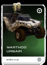 H5G REQ Card Warthog urbain