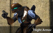 Armadura de vuelo