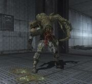 Infected20Human