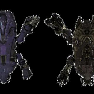 Perspektiven des Scarabs