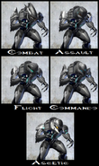 255px-Elite Armor Permutations