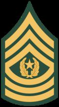 Sargento cm