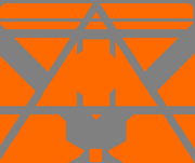 Orange Team Logo