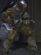 Brute mayor H2
