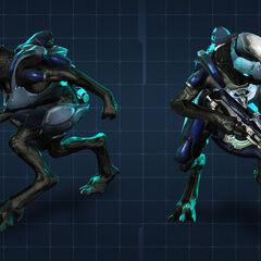 Jackal Ranger in Halo 4