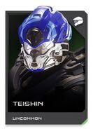 H5G REQ card Teishin-Casque