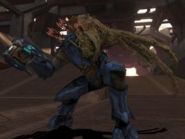 ELITE COMBAT FORM IN HALO 3 by victortky