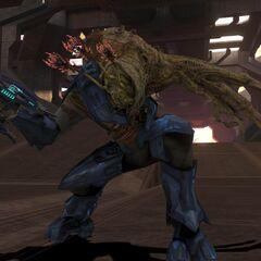 forma da combattimento elite in Halo 3