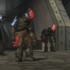 Capitani nell'ultimo livello di Halo 2