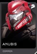 REQ Helmet Anubis