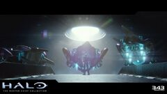 Halo MCC Erfolg Pazifist