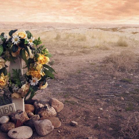 Die Grabstätte von Richard Sekibo.