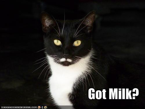 File:Got milk?.jpg