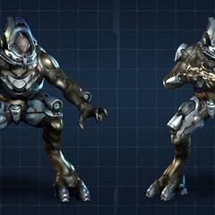Elite Ranger in Halo 4