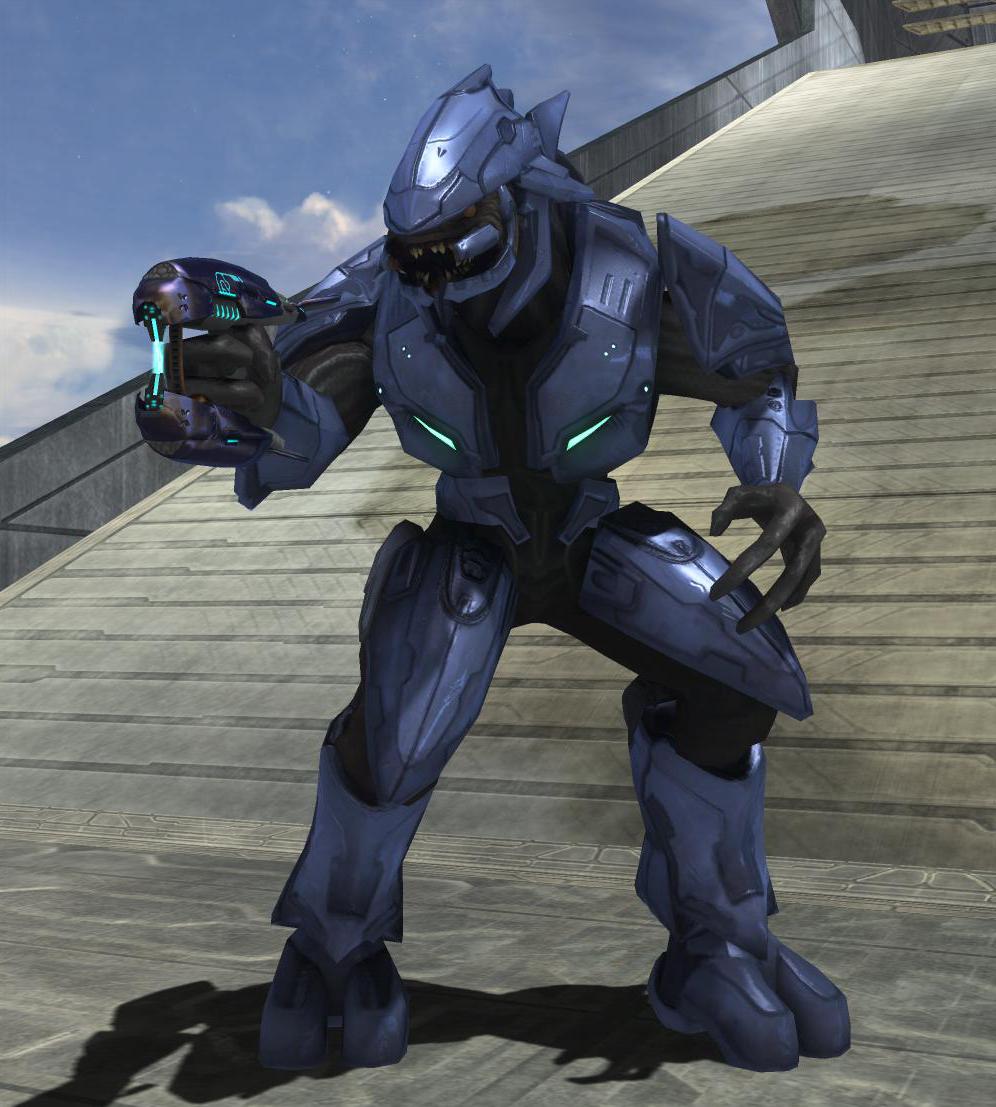 Atractivo Anatomía De Halo Elite Ilustración - Imágenes de Anatomía ...