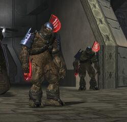 Guardias brutes