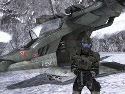 Pilot With Hornet
