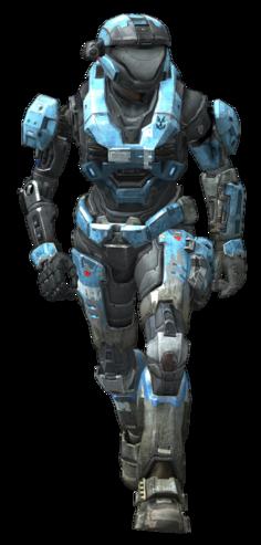 Reach E310 Kat