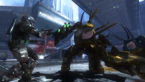 Cacciatori Dorati Halo 3 ODST