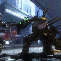 Cacciatori dorati in Halo 3: ODST