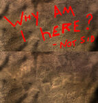Why Am I Here - Easter Egg