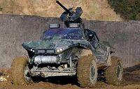 Warthog in Action