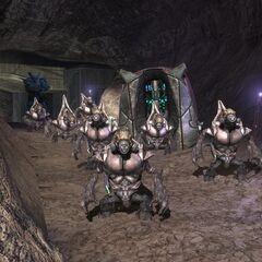 Ein Unggoy Squad bestehend aus vielen hochrängigen Special Operations Unggoy.