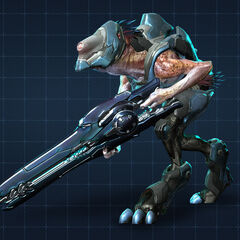 Jakal Cecchino in Halo 4