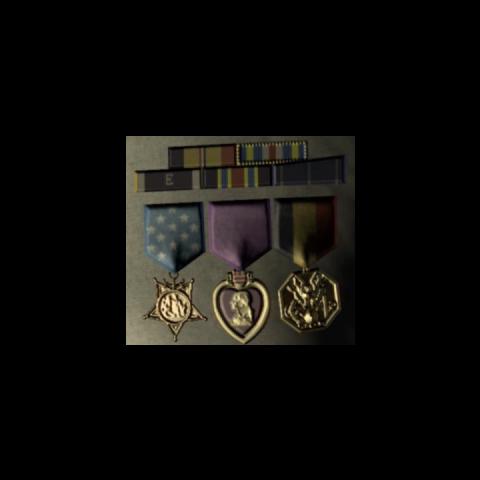 Die Medaillen an Hoods Ausgehuniform