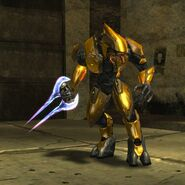 Gold Elite12