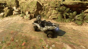 Normal Warthog