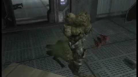 Halo 3 transformasion flod