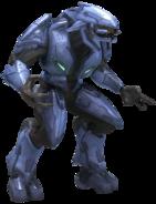 Elite Menor H3
