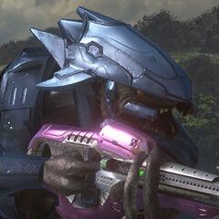 Elite impersonabile nella campagna cooperativa di Halo 3