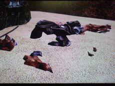 Huka's Death