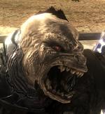 Brute Roar
