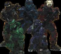 Wolf Team Members