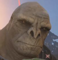 Craig-the-brute