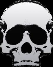 HWTGW Skull