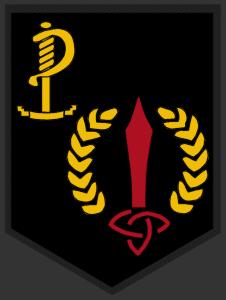 8th Irish Regiment Tab