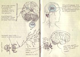Spartan Neural Interface