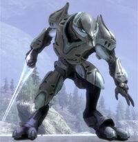 Zephyr 'Rorke Spec Ops Elite