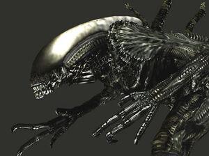 Aliendrone tex1-1-