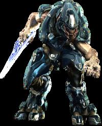 Storm Elite